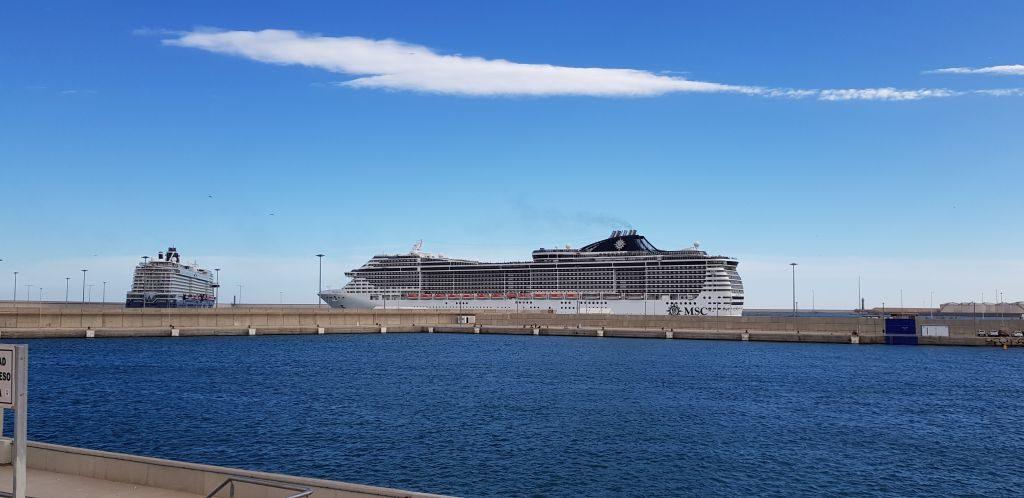 Two large cruise ships